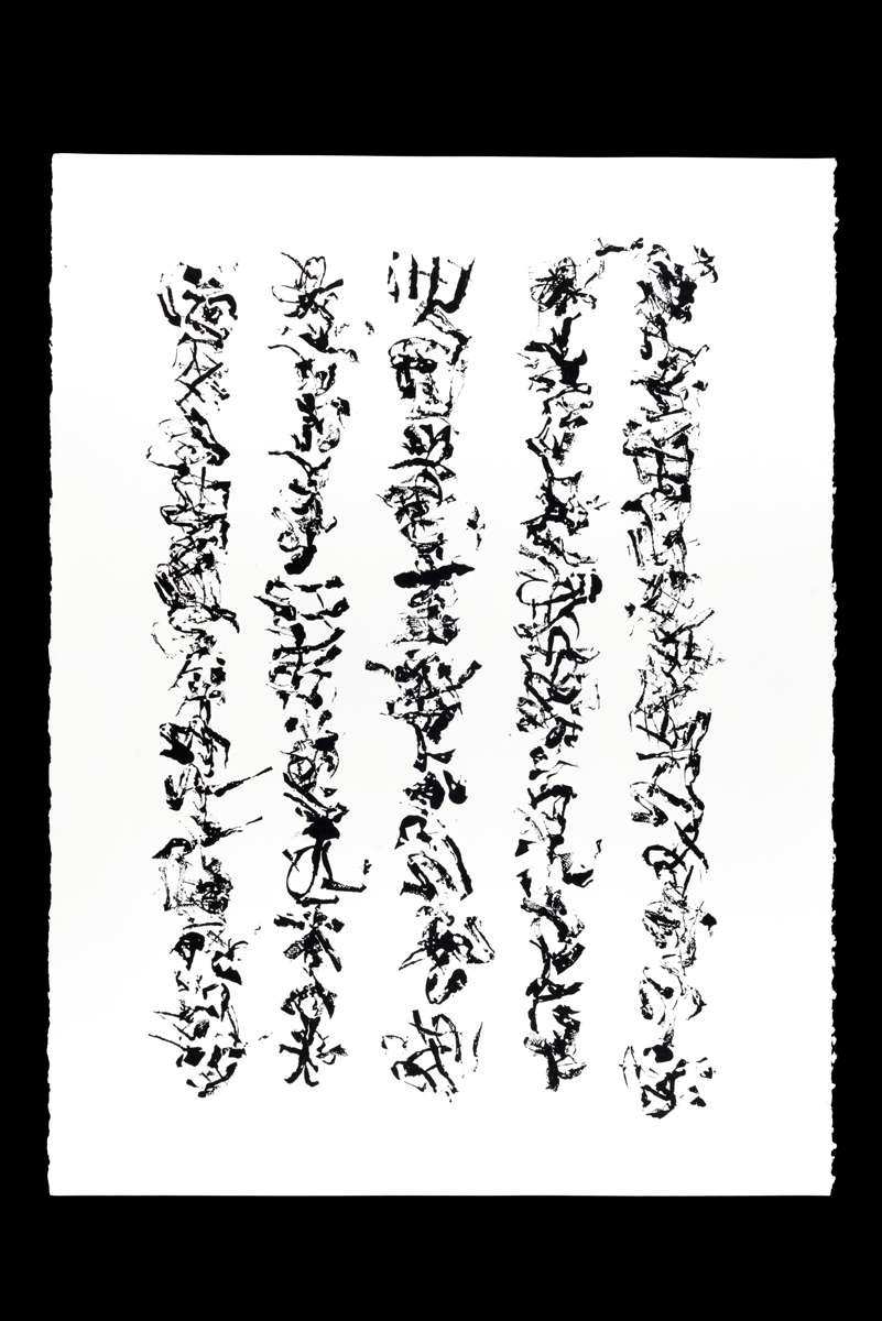 Papier. 56 x 76 cm 14